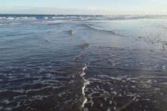 oceano1