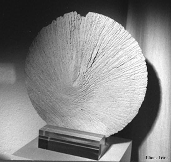 16-Diskus, Ton weiss, cm. 43 ca.